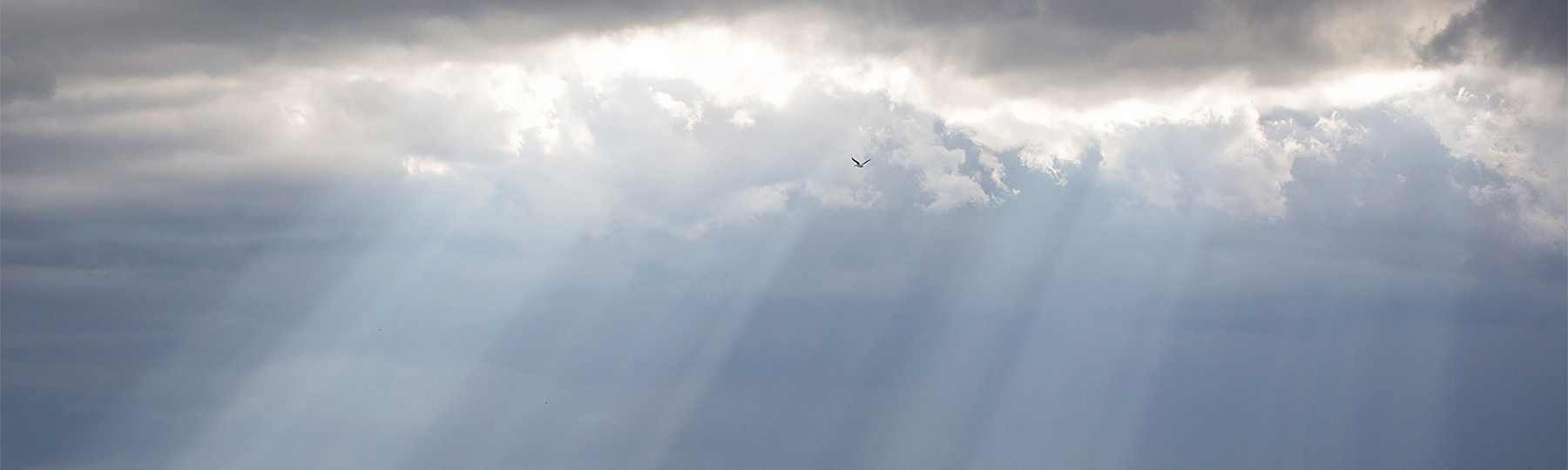 arlington-sky